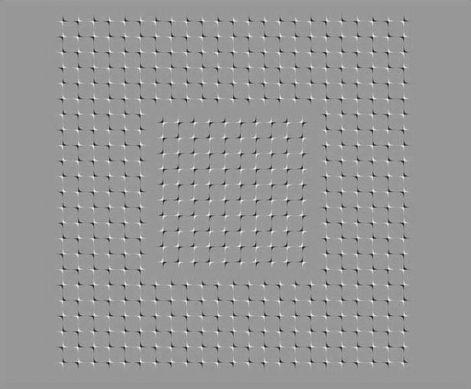 optikai.jpg